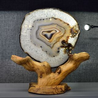 Root object with agate plate